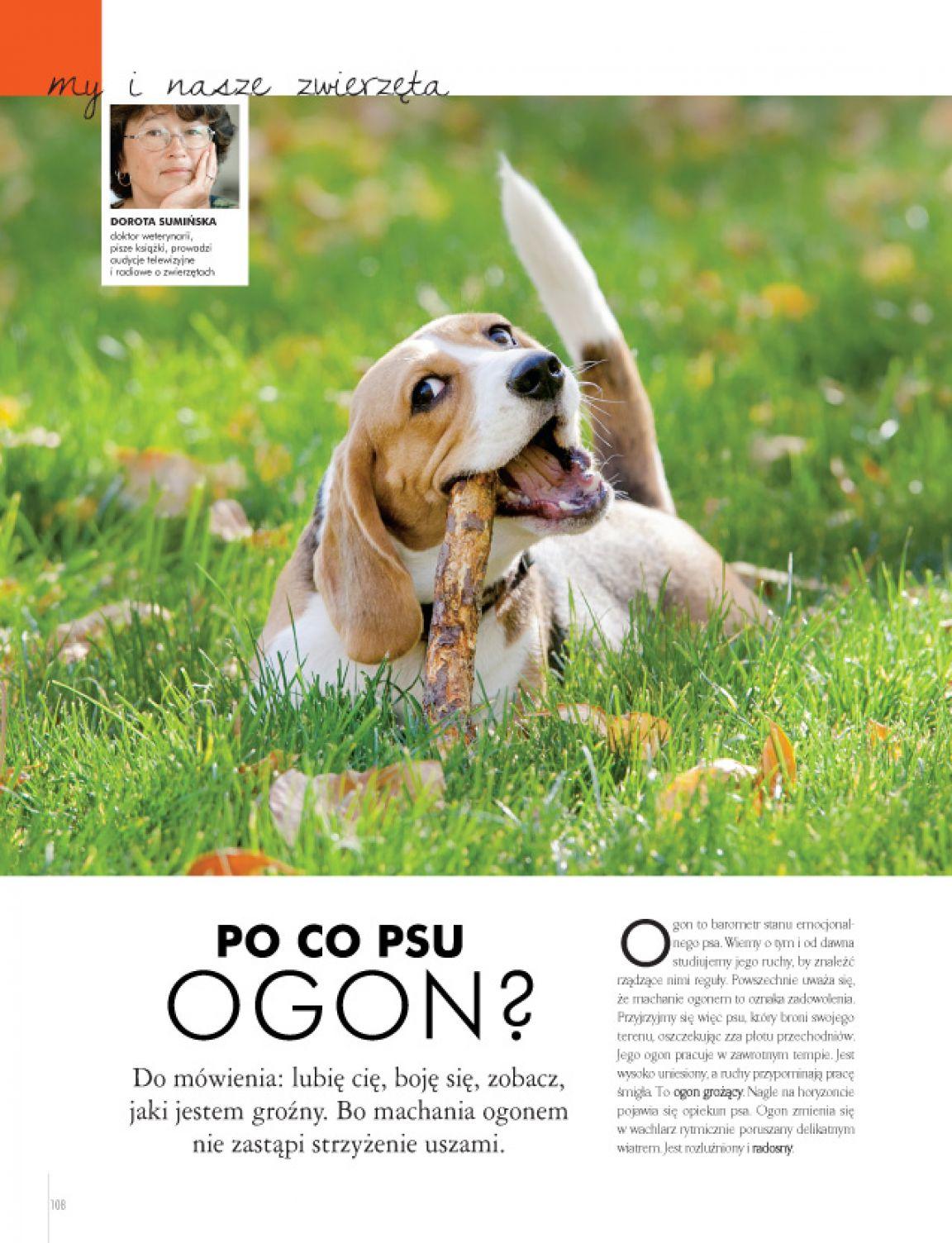 Strona 28