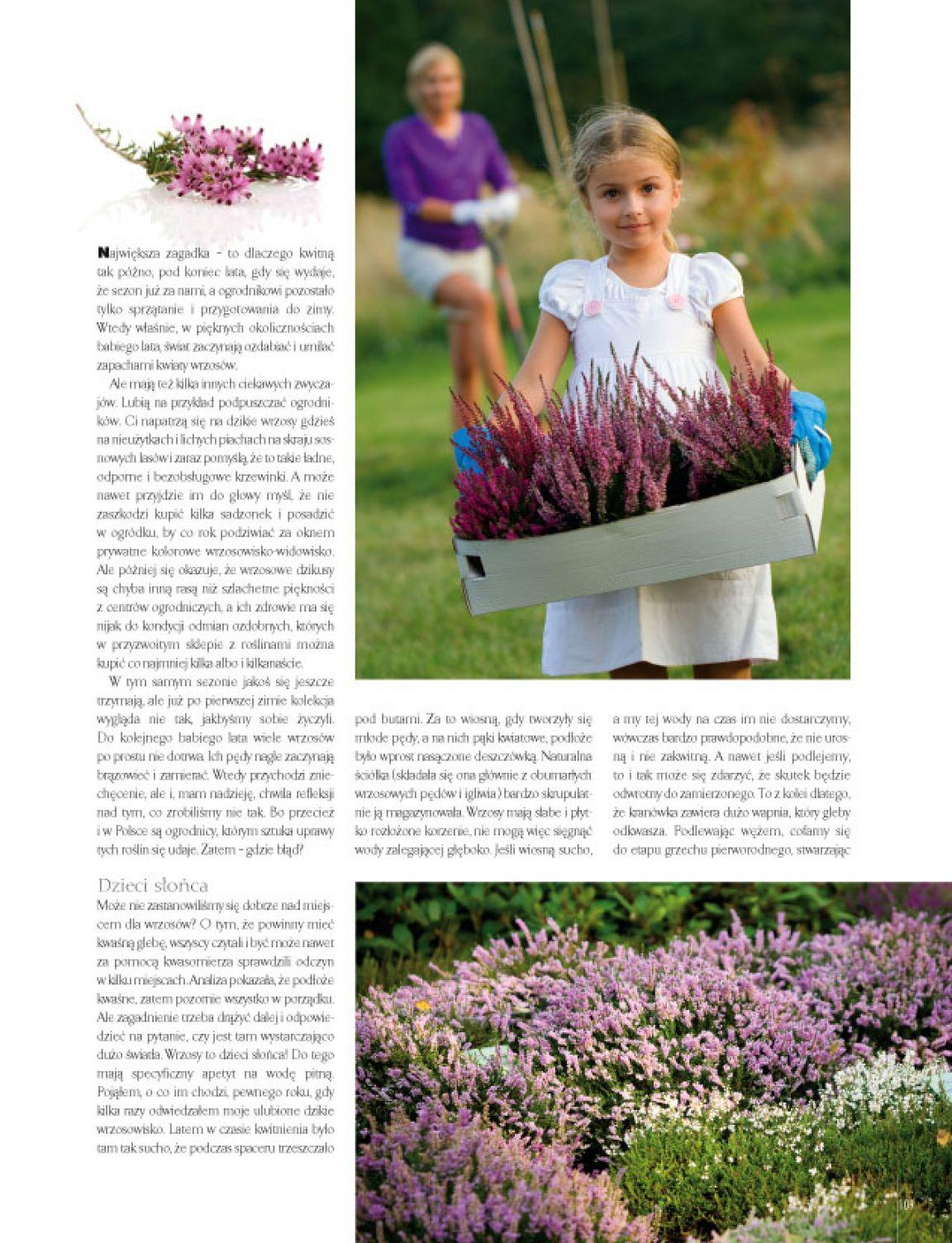 Strona 33