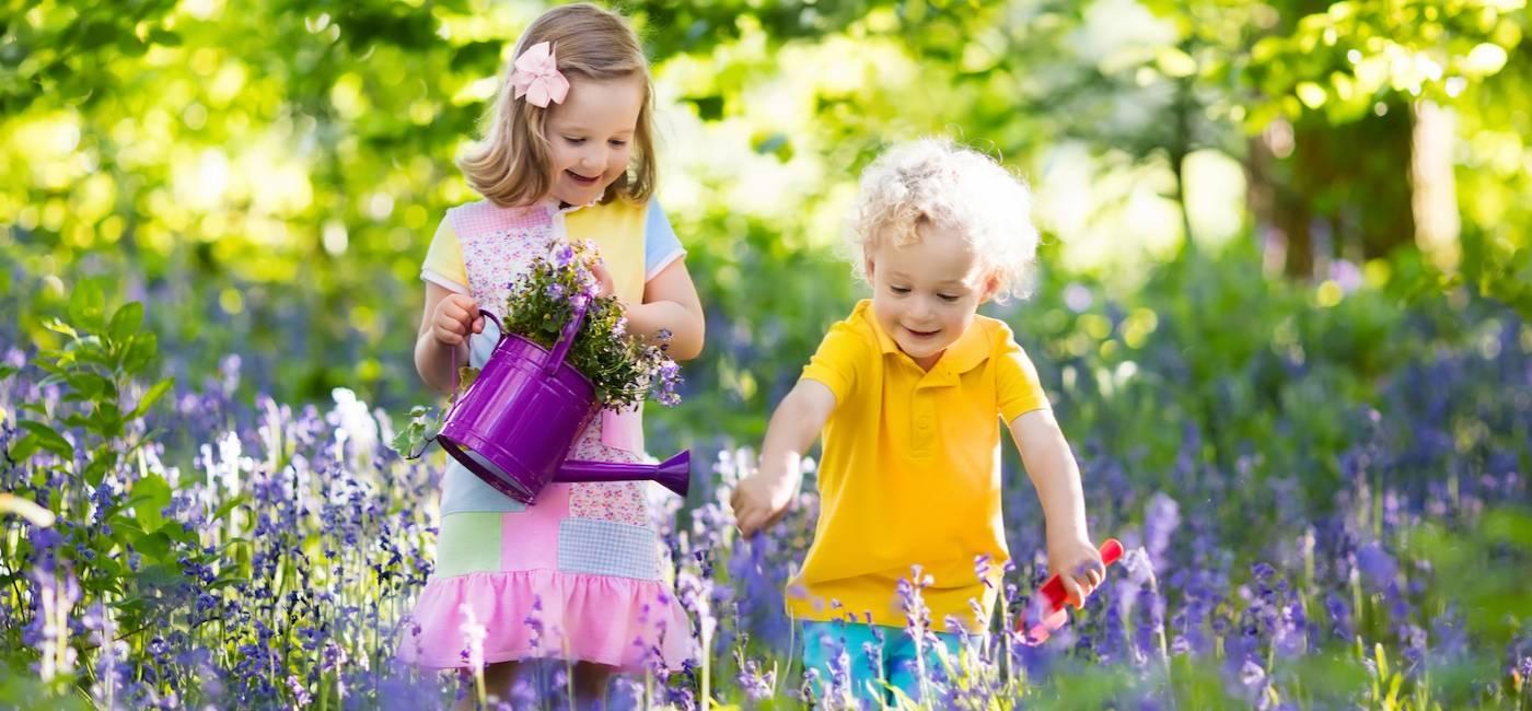 rosliny-do-ogrodu-dla-dzieci-07.jpg