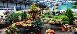 Skierniewickie Święto Kwiatów, Owoców i Warzyw