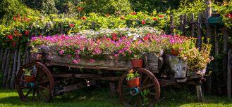 niesamowite pomysły na dekoracje do ogrodu