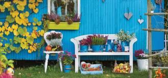 Kalendarz księżycowy ogrodnika: jakie prace ogrodowe wykonać w październiku?