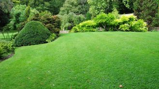 Jak dbać o trawnik w czasie upałów?