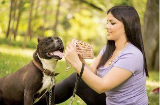 Jak wybrać najlepszy kaganiec dla psa?
