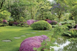 Pięć kroków do zielonego trawnika