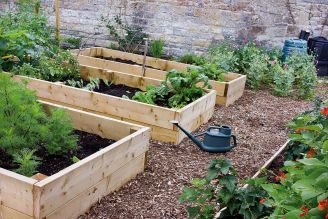 Zakładamy ogródek warzywny – odcinek pierwszy
