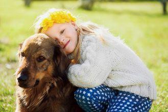 Jak opiekować się starym psem?
