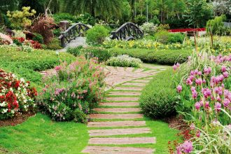 Ścieżka w zieleni