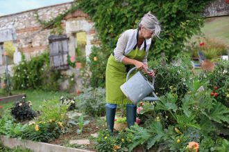 Jakie warzywa siać w czerwcu i jak walczyć ze szkodnikami? Zakładamy ogródek warzywny - odcinek czwarty
