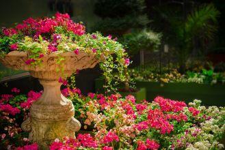aranżacja ogrodów cennik