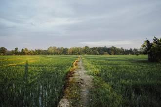 Pomysł na agroturystykę: jak zamieszkać na wsi i znaleźć źródło utrzymania?