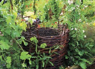 Złoto ogrodników