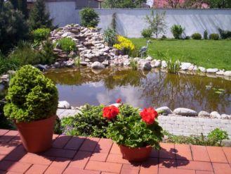 Magia wody w ogrodzie