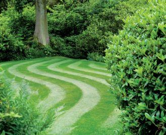 Trawnik jak marzenie