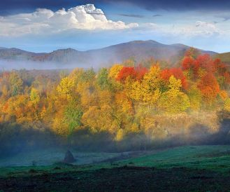 Jak odróżnić mgłę od smogu?
