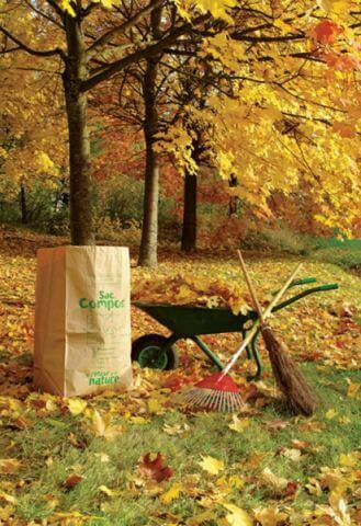 Kompostujemy liście