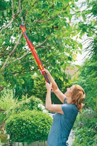 Krótkie cięcie w ogrodzie