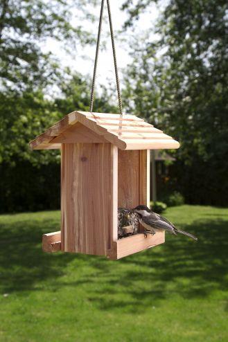 Jak zbudować karmnik dla ptaków?
