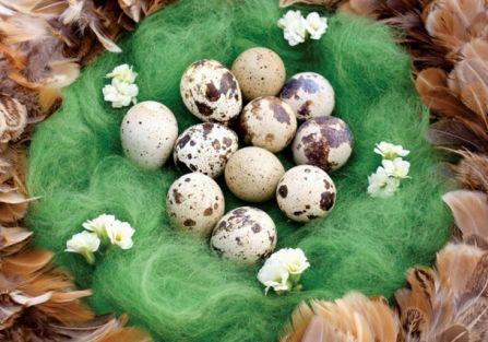 Magia z jaja