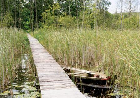 Sesja jogi nad jeziorem