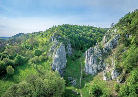 Wąwóz Bolechowicki - idealne miejsce na wycieczkę