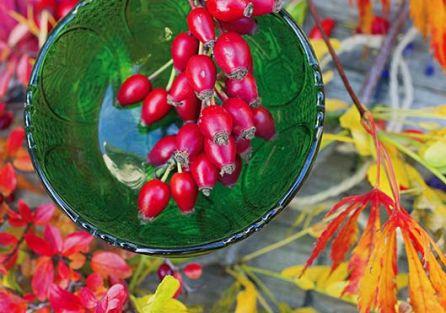 Jesienne dekoracje z liści i dzikiej róży