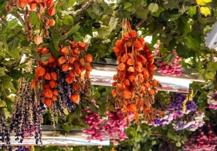 Jak suszyć kwiaty, żeby długo cieszyły oko?