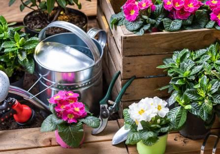 wiosenne prace w ogrodzie