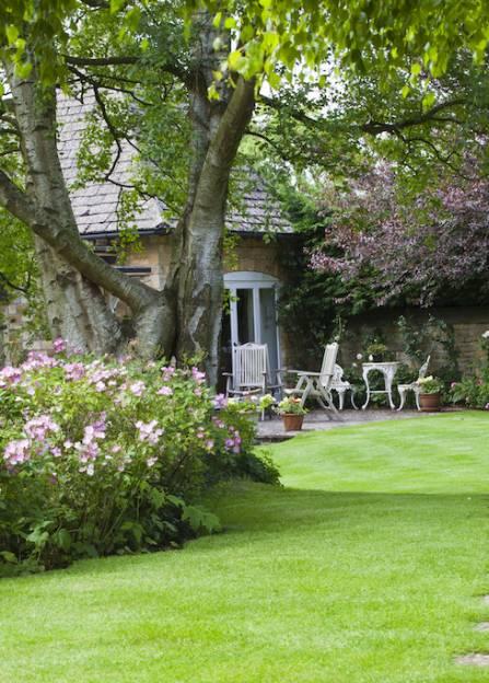 data/articles/Piękne rośliny przed twoim domem