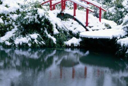 W ogrodzie Królowej Śniegu