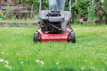 Jak zadbać o trawnik na wiosnę?