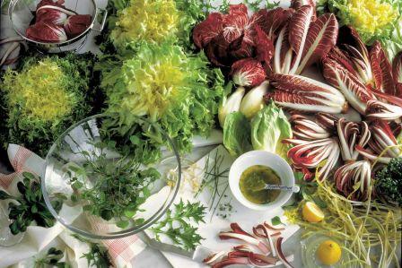 Wszystko o sałacie w kuchni