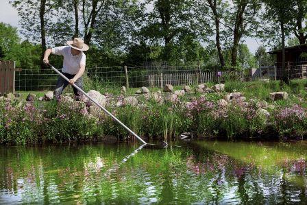 Jak dbać o oczko wodne w ogrodzie?