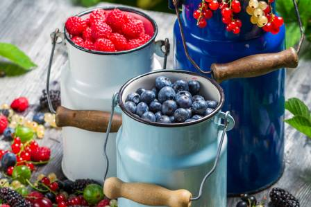 Dieta odchudzająca na lato – co jeść, żeby schudnąć?