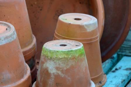Jak samodzielnie odnowić doniczki ceramiczne
