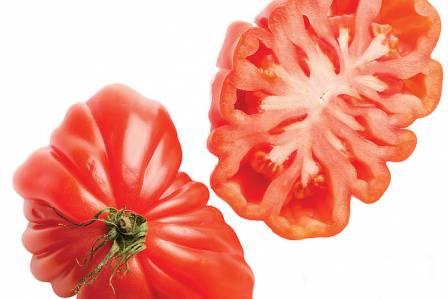 Poznaj najsmaczniejsze odmiany pomidorów