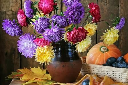 Wrzesień – imieniny obchodzą
