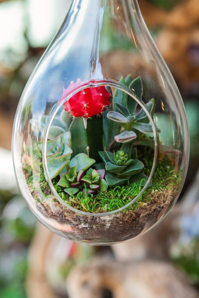 kompozycje kwiatowe w szkle