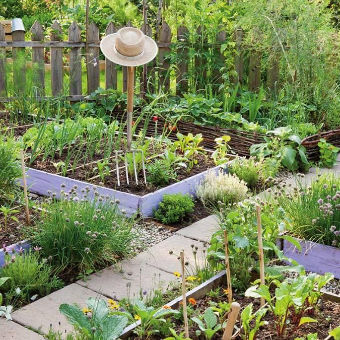 jak założyć ogródek warzywny