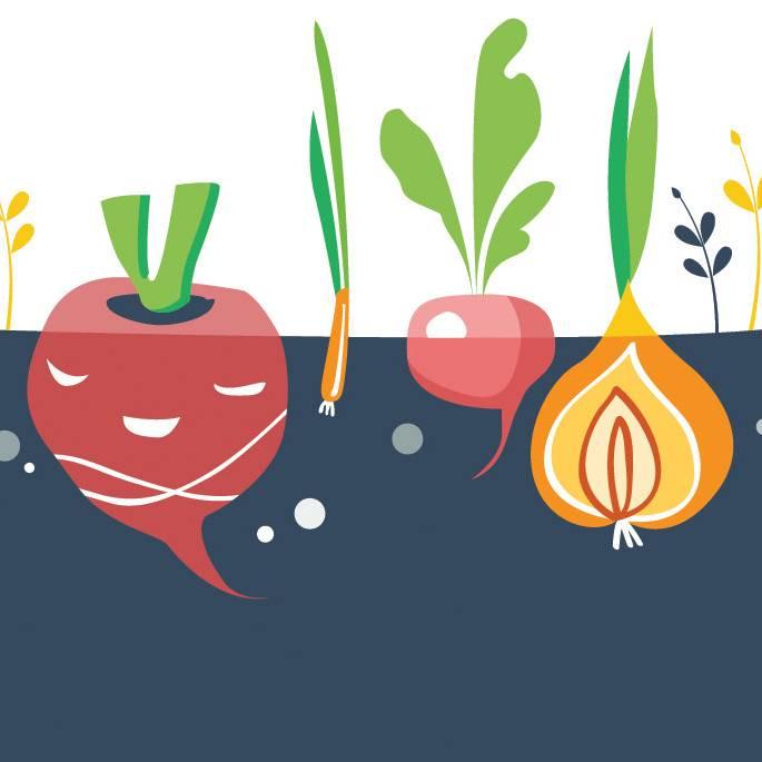 Kalendarz księżycowy ogrodnika: jakie prace ogrodowe wykonać w listopadzie?