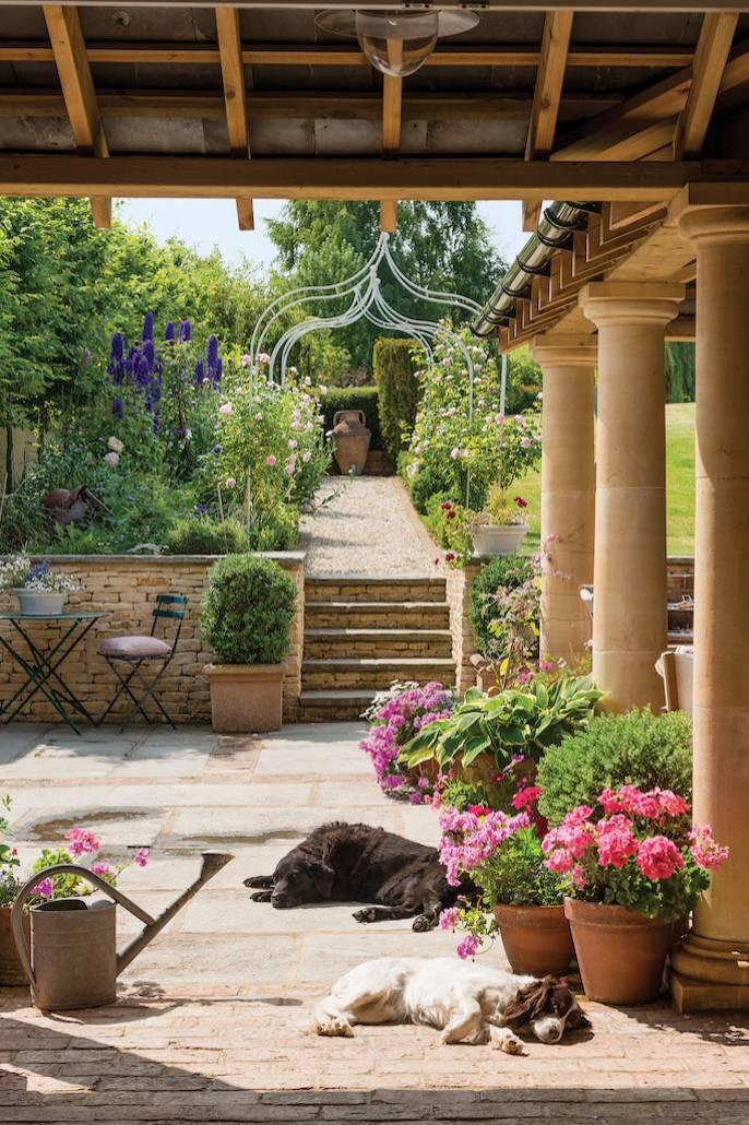 To ulubione miejsce psów,  które popołudniami wygrzewają się nasłońcu.