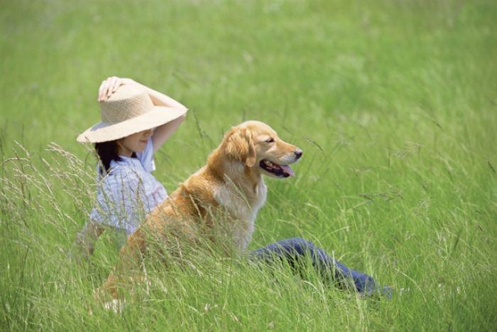 Kto zrozumie psa