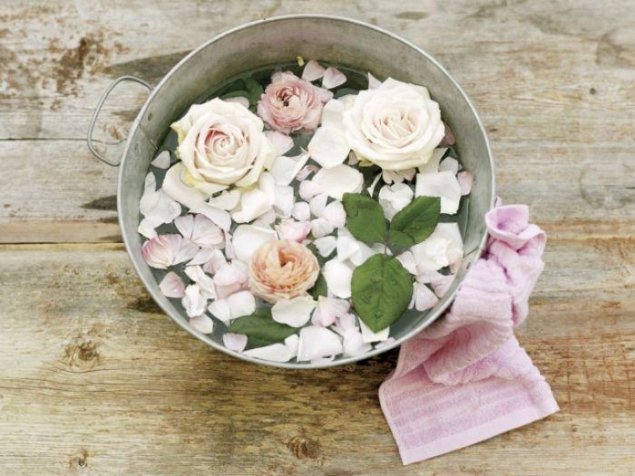 Kosmetyki z róży
