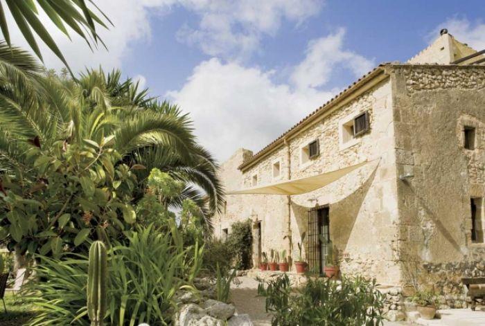 Farma w cieniu palm