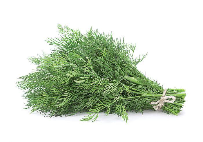 Solone zioła