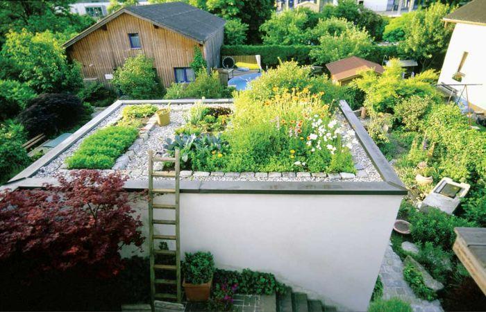 Jak zrobić ogród na dachu?