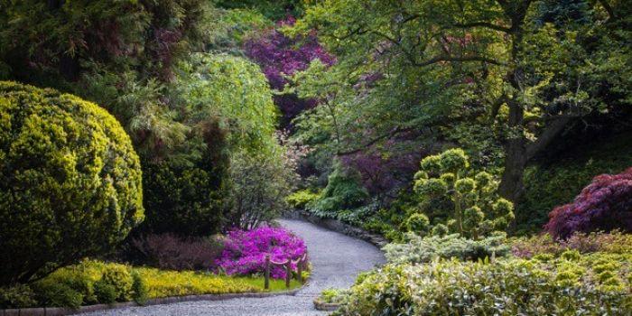 Otwarcie sezonu w Arboretum w Wojsławicach