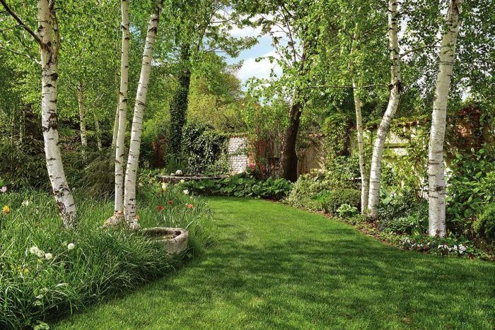 Jak dbać o trawę w ogrodzie?