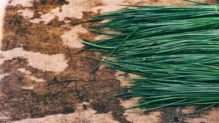 Świeże zioła w kuchni, czyli nie czekaj na nowalijki