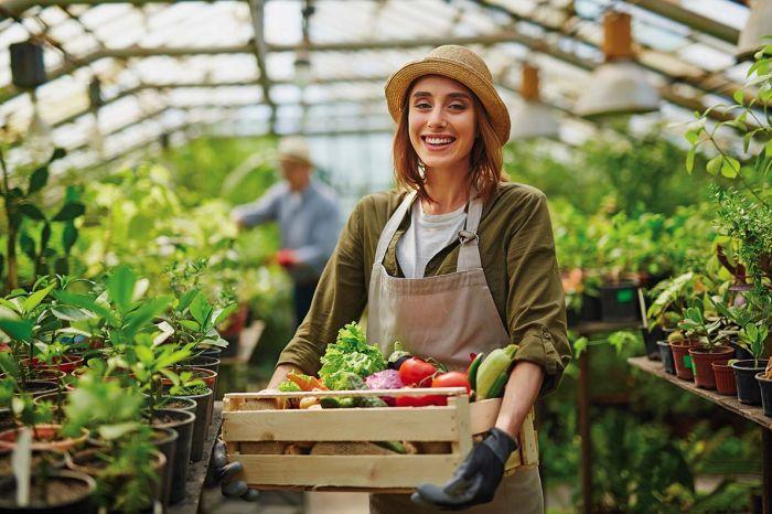 Jak zostać rolnikiem ekologicznym?
